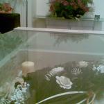 дневна-стъклена-маса